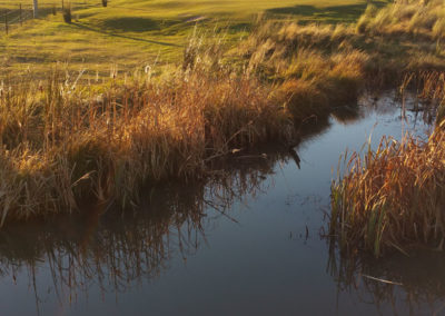 golf32